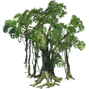 Real Trees Sprite Set1